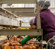 Magíster en Calidad, Seguridad Alimentaria, Dietética y Nutrición